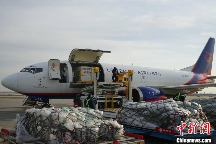 西安咸阳国际机场年货邮吞吐量超38万吨。 供图