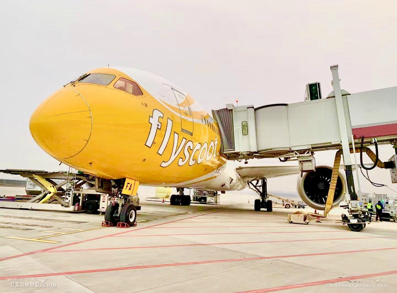 酷航郑州=新加坡航线升级为波音787梦幻客机执飞