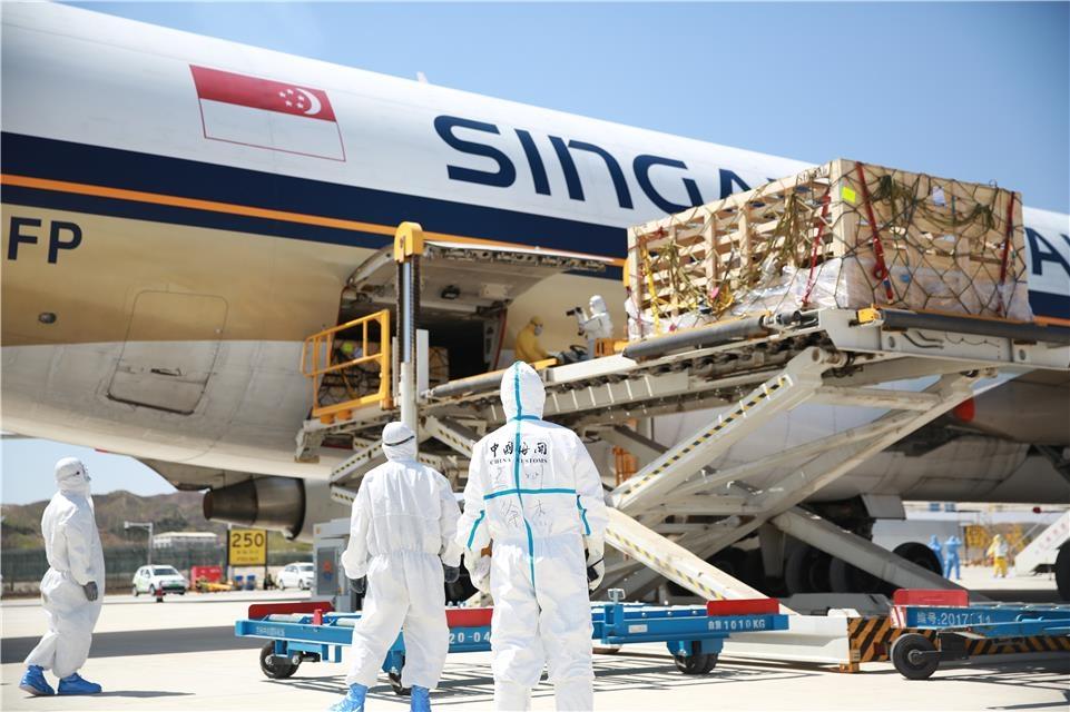 近1500只澳大利亚种羊搭载新加坡航空货运包机入境甘肃