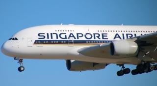 受疫情沖擊 新加坡航空集團6月份客運量下跌99.3%