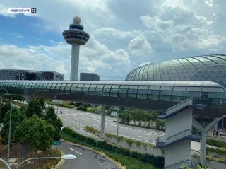 新加坡航空集團7月客運量同比下降98.6% 計劃向疫情穩定國家開放旅行