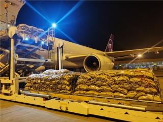 直飞拉哈尔 运来松子香——圆通多条货运航线助力中巴经济走廊建设