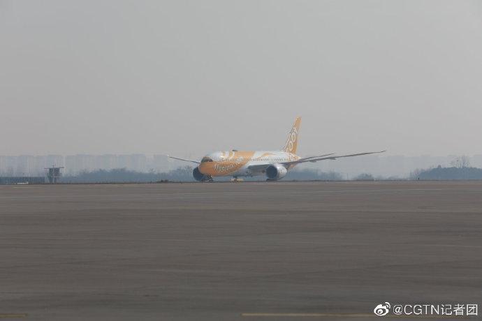 WHO专家组乘酷航航班抵达武汉天河机场
