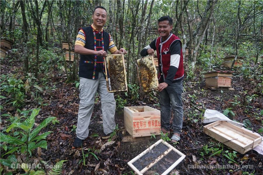 东航沧源蜜蜂产业扶贫基地里,蜂蜜丰收了(左为东航扶贫干部梅艺宝)