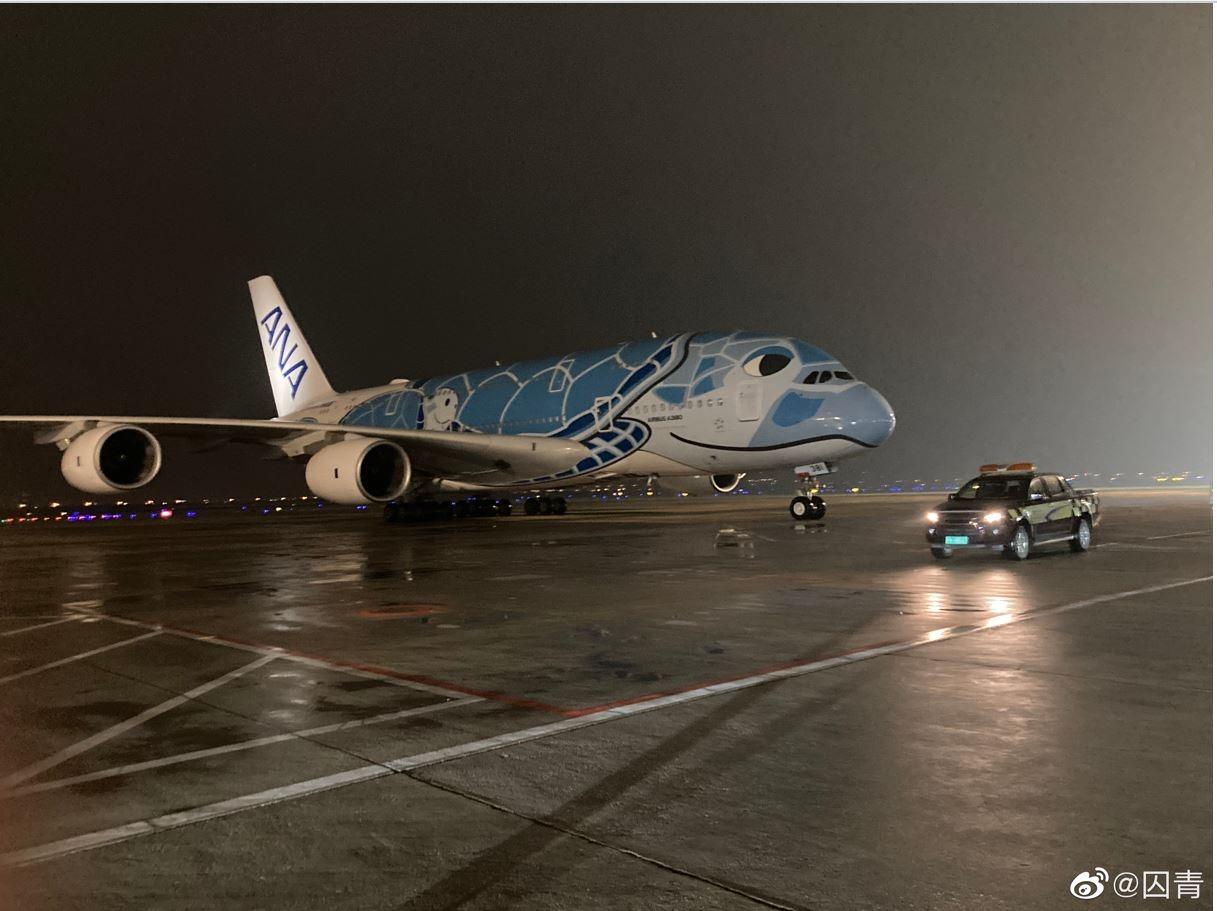 """视频:欢迎!全日空A380""""大海龟""""抵达厦门机场"""