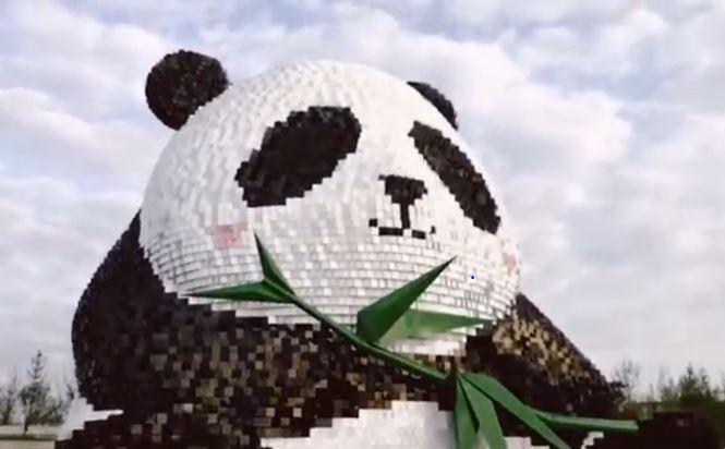 """视频:熊猫""""团团""""  天府机场新地标上线"""