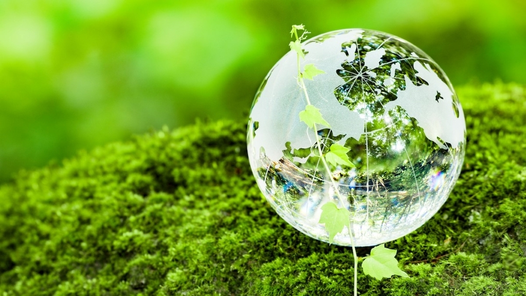 """达美航空""""入盟"""",打造净零碳未来"""